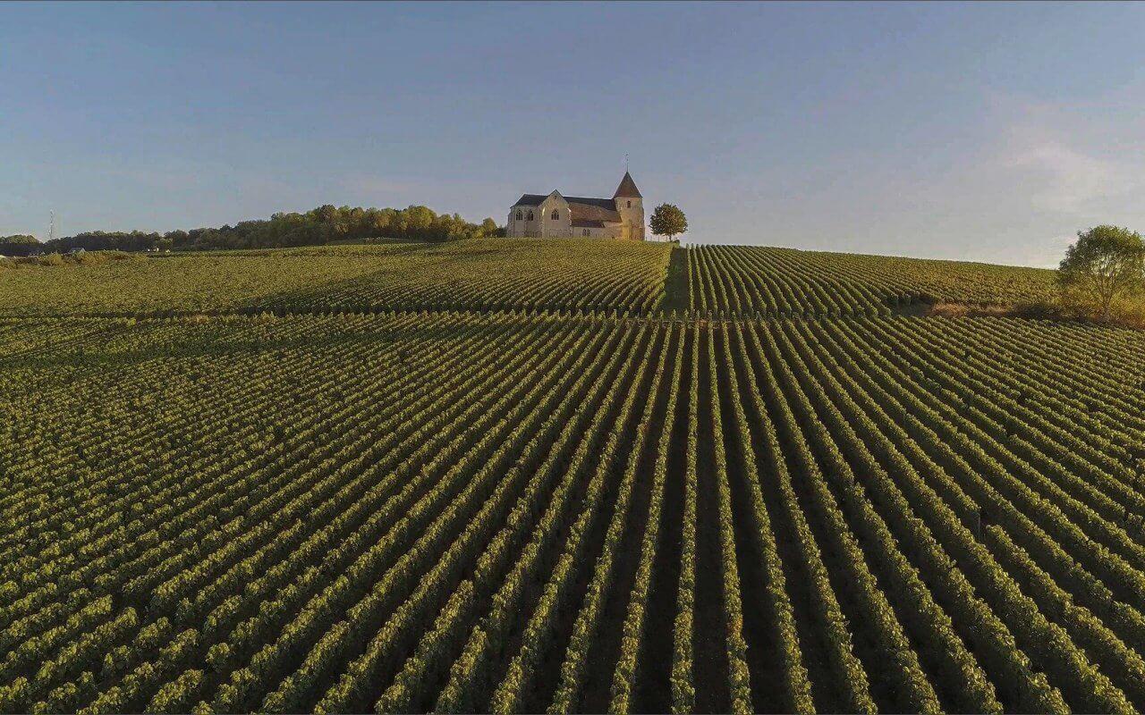 visite de la Champagne Reims