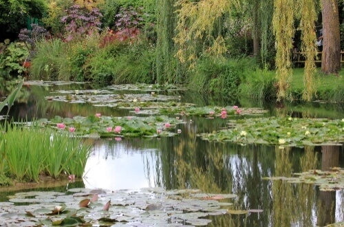 visite à giverny monet